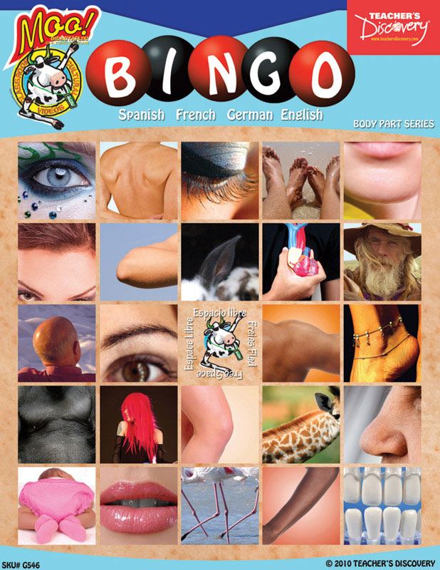 Body Parts Bingo & Flashcard Set (2010)