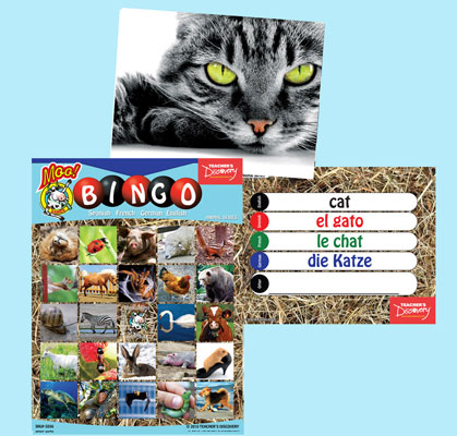 Animal Bingo & Flashcards (2010)