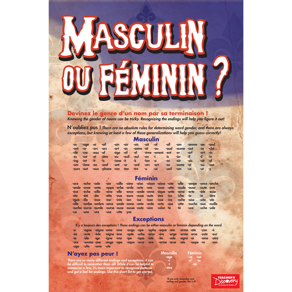 Gender of Nouns French Poster