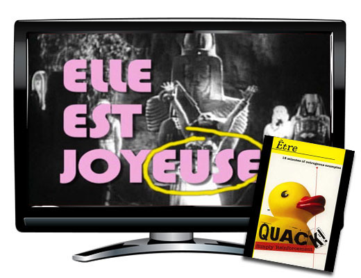 Etre Verbs French DVD